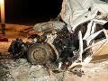 FOTO Tragická zrážka kamióna a mikrobusu v Rusku: Zahynulo dvanásť ľudí