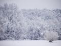 Moskvu zasiahla snehová búrka: Ráno tam namerali 56 centimetrov snehu