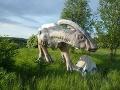 Dinopark v Tatrách mal byť do konca minulého roka odstránený, tvrdí inšpekcia