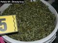 FOTO Hrozivý nález polície: Zaistili pervitín aj tisíce dávok marihuany