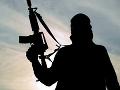 Ozbrojenci v Nigérii prepustili