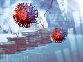 RRZ bije na poplach: Náklady na boj proti KORONAVÍRUSU môžu dosiahnuť až dve miliardy eur