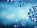 V Bretónsku objavili nový variant KORONAVÍRUSU: Nemusí ho rozoznať ani PCR test