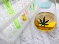 Štát New York odsúhlasil návrh zákona o legalizácii rekreačnej marihuany