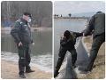 Dráma pri Prievidzi! VIDEO Ženy zachraňovali psa, no spadli do ľadovej vody: Policajt ihneď konal