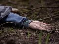 Tragédia na východnom Slovensku: Muža (†40) zavalil strom, nemal šancu prežiť