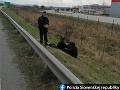 Polícia rieši prípad troch Afgancov, ktorých našli pri diaľnici D2