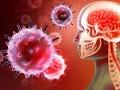 Vedci varujú pred parazitom, ktorý môže vážne ohroziť ľudstvo: Len nech sa nikomu nedostane do mozgu