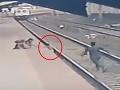 Dráma na stanici: VIDEO Syn (6) slepej matky padol do koľajiska, záchrana v poslednej sekunde!