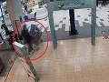 Ako je možné takto zdrhnúť? VIDEO Ďalší muž uložil do vozíka drahý tovar a... veď sa pozrite!