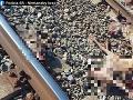 FOTO Polícia vyšetruje okolnosti usmrtenia sedemnástich jeleňov a laní
