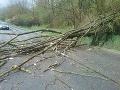 Hasiči zasahujú kvôli silnému vetru: Najhoršia situácia je v Bratislavskom kraji, FOTO spúšte