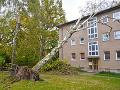 Víchrica v Maďarsku vyvracala stromy: Poškodené sú aj viaceré budovy