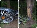 Desivé FOTO z miesta nehody pri Nitre: Mladíkovi (†33) sa stal osudným náraz do stromu