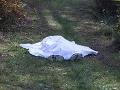 Desivý nález: Na pozemku bývalého policajta sa našlo desať zakopaných tiel