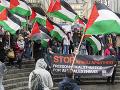 propalestínsky protest