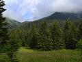 Zmeny v envirorezorte: Štátne lesy v národných parkoch by sa mali presunúť pod ochranárov