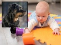 Rodinná tragédia: Otec iba na pár minút odišiel z domu! Bábätko čakala krutá smrť