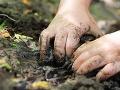 Robotník išiel sekať trávu, keď v bahne zbadal niečo lesklé: Najväčší poklad v Európe!