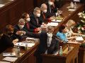 V českých parlamentných voľbách budú môcť voliči hlasovať aj v Bratislave