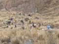Obrovská tragédia v Bolívii: Pri nehode autobusu zahynulo 21 ľudí
