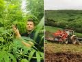 Na východe Slovenska pestujú