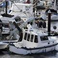 Cunami zabili v Kalifornii jedného človeka