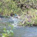 V Starej Ľubovni sa utopil 15-ročný chlapec