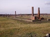 Pozostatky baraku v úseku BIIb - v terezínskom rodinnom tábore.