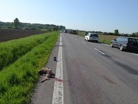 Srnka, prebiehajúca cez cestu, spôsobila dopravnú nehodu medzi Petrovcom nad Laborcom a Nacinou Vsou v okrese Michalovce.