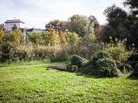 Pohľad na staromestskú záhradu Prügerka
