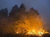 S rozsiahlym požiarom bojuje 3500 hasičov.