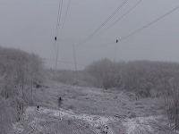 Príčinou je náhla vlna mrazivého počasia, ktoré spôsobilo popretŕhanie elektrického vedenia