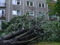V českom meste Karviná nebezpečne padali stromy
