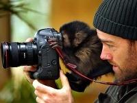 Na zvedavé opise sú zvyknutí nielen turisti, ale aj fotografi.