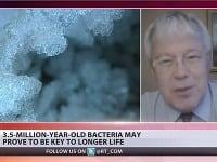 Stane sa ľudstvo vďaka baktérii zdravším a odolnejším?