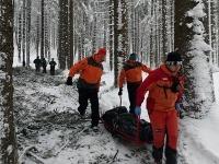 Muž (†39) zahynul v lese pri práci