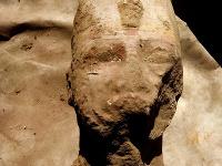 Hlava Ramzesa II.