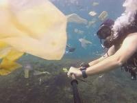 Rich pláva medzi plastom v oceáne