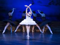 Nové Labutie jazero naštudoval s baletom Štátneho divadla Košice svetoznámy Vladimir Malakhov.