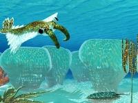 Bezstavovec Anomalocaris žil v období kambria