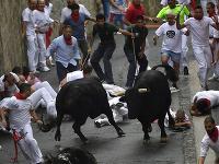 Festival sv. Fermína v Pamplone každoročne sprevádza beh s býkmi úzkymi uličkami mesta.