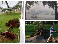 Búrka v Poprade vyvracala stromy.
