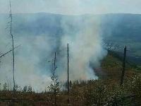 Hasiči zasahujú pri rozsiahlom požiari lesa v Polomke.