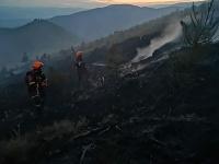 Požiar lesa pri Polomke zasiahol plochu približne šesť hektárov.