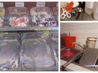 Výsledky kontrol prevádzok s predajom nebalenej zmrzliny.