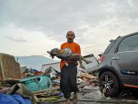 Škody po zemetrasení a cunami