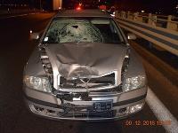 Chodkyňu na rýchlostnej ceste zrazilo auto
