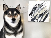 Pes maľuje obrazy.