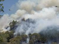 Lesný požiar na novozélandskom Južnom ostrove si vyžiadal evakuáciu tisícok ľudí.